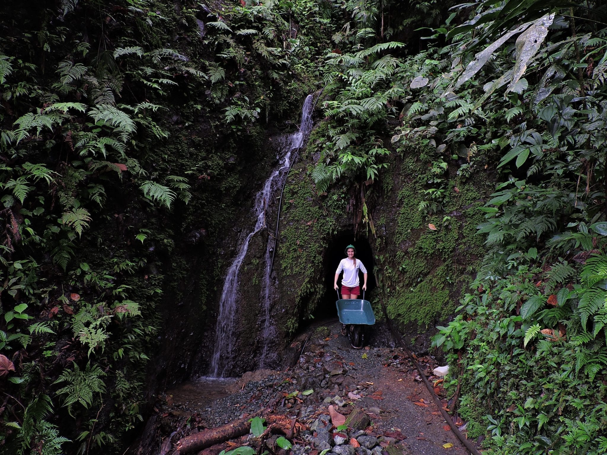 God mining used to be an important economical support for Osa Peninsula, however it is not practiced in the area since the creation of Corcovado National Park, due to high ecological damage delivered to local jungles.
