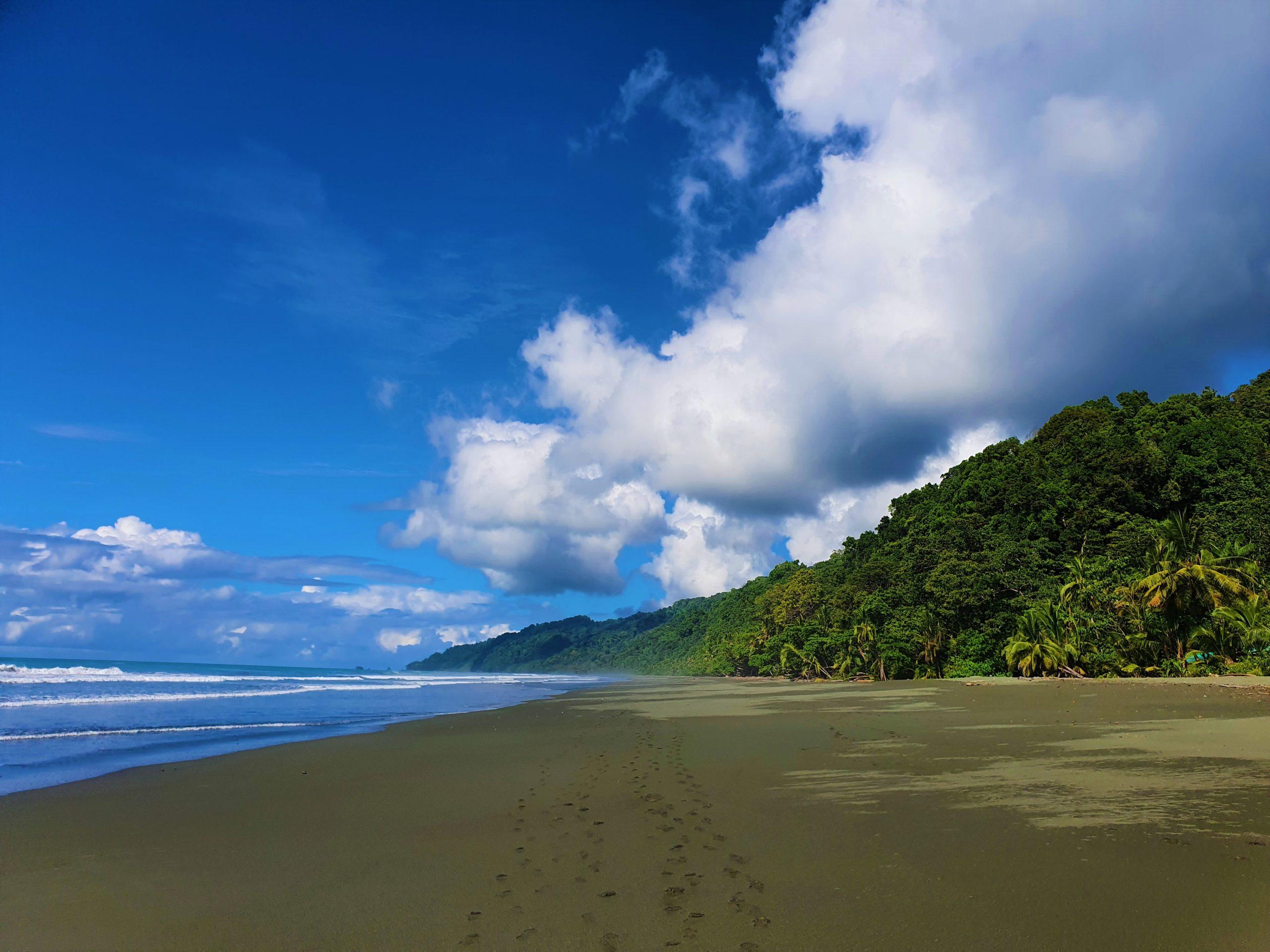 Beach Corcovado National Park
